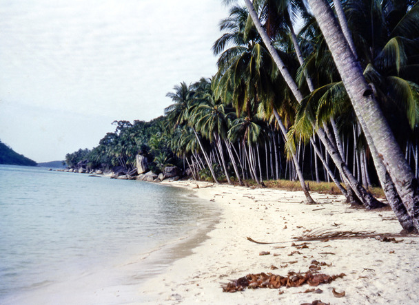 Pulau-Perhentian-4.jpeg
