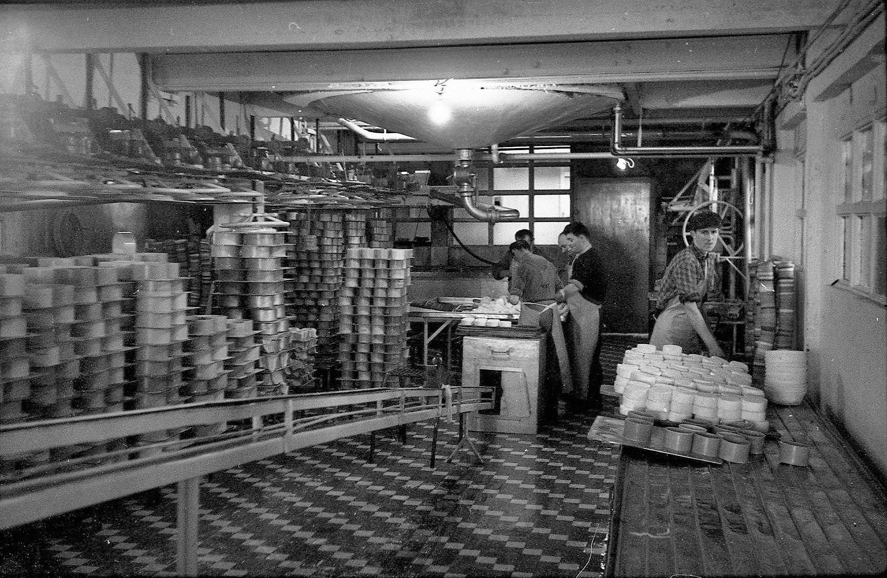 Cheese-factory-4.jpeg