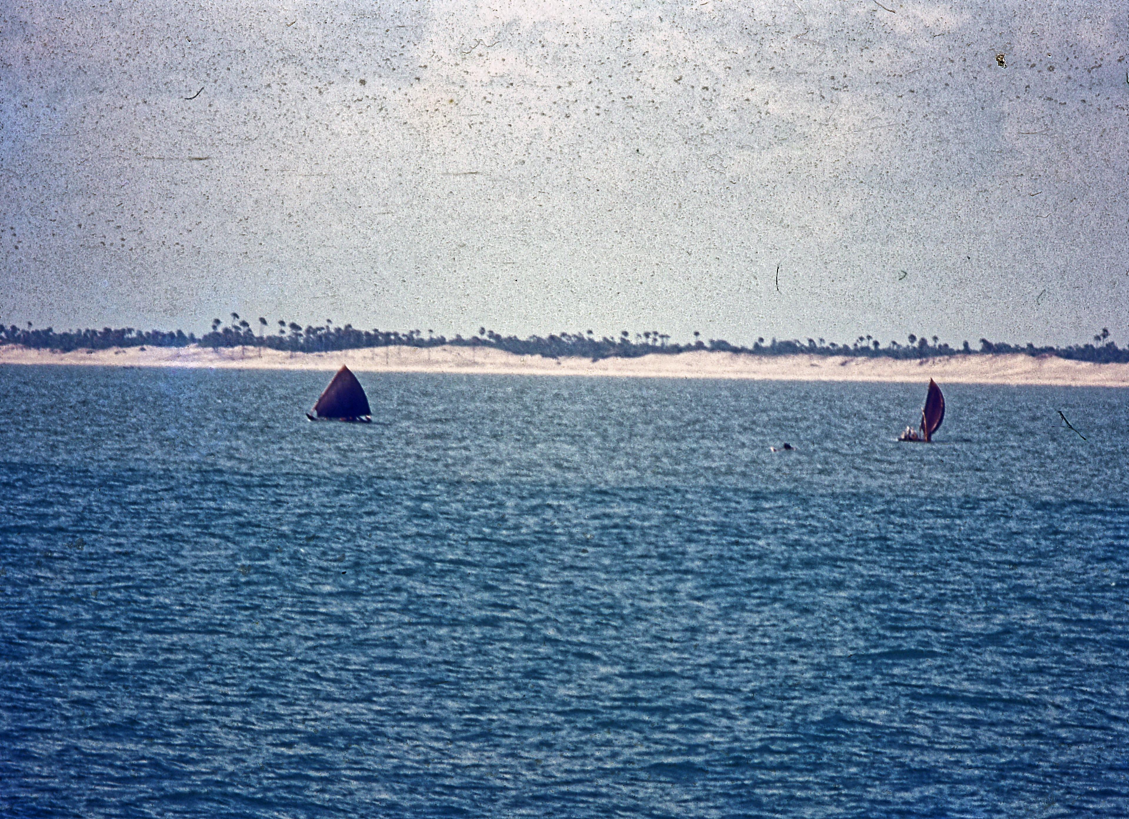 Boats-1.jpeg