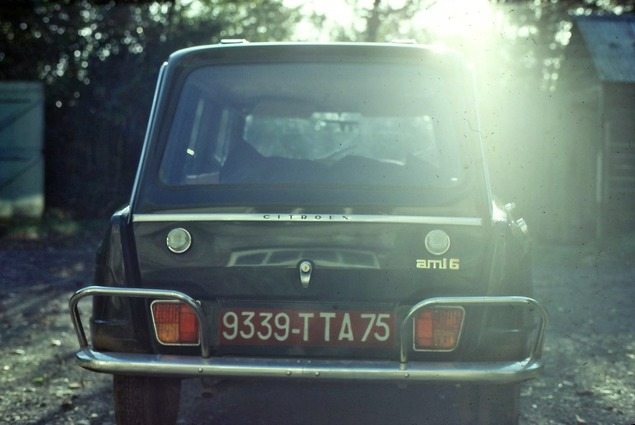 Ami-4.jpeg