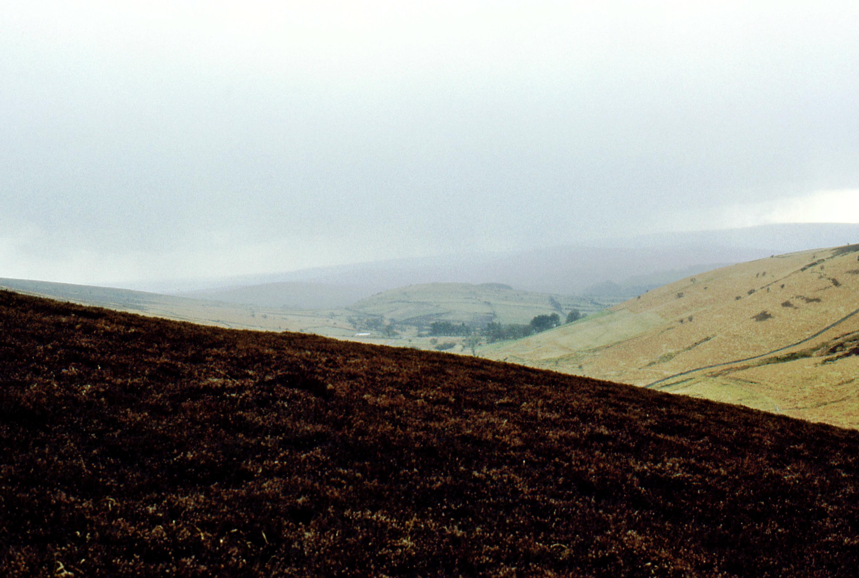 Dartmoor-3.jpeg