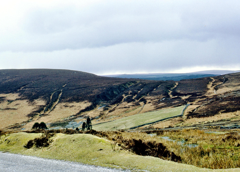 Dartmoor-4.jpeg