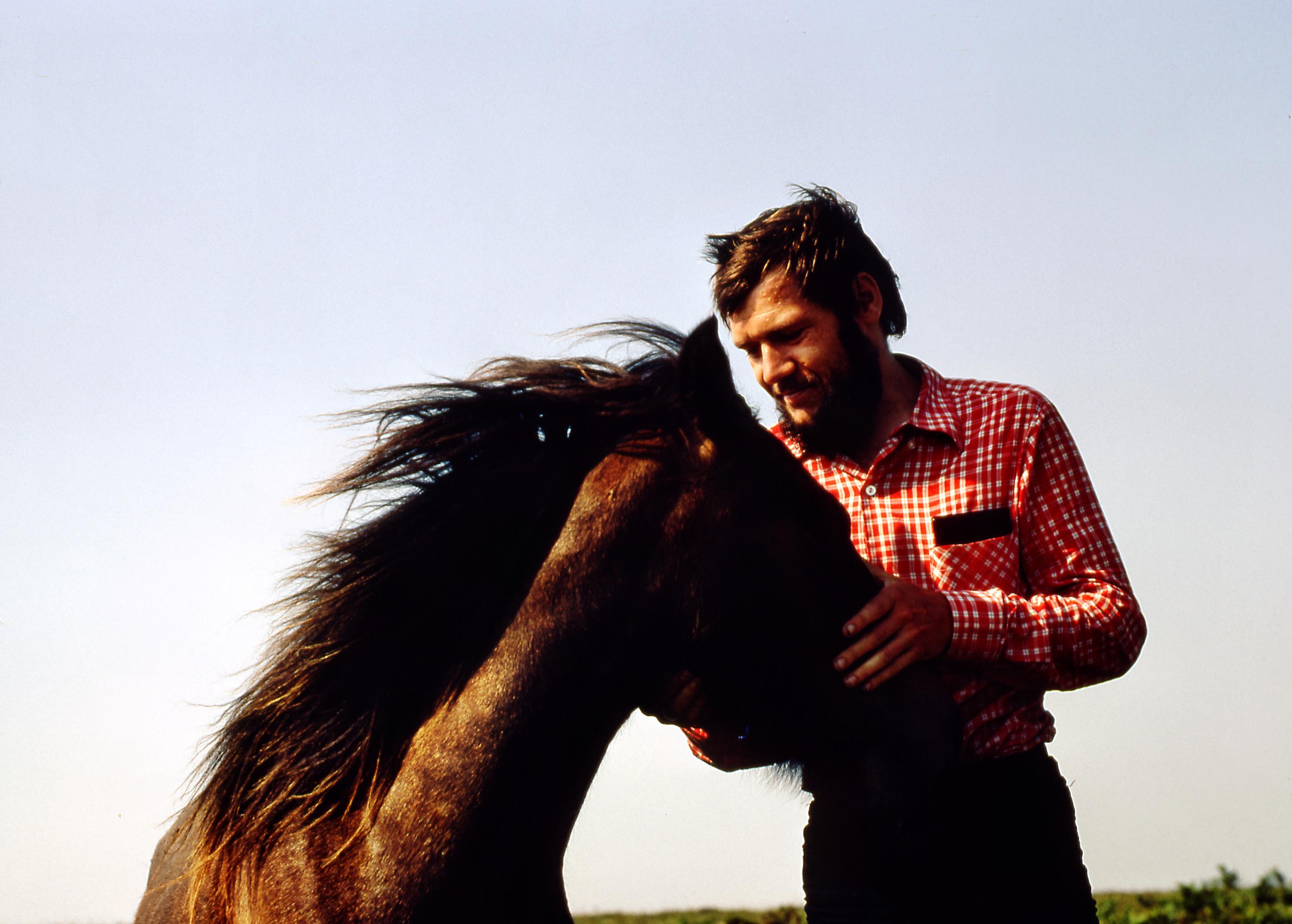 Pony-1.jpeg