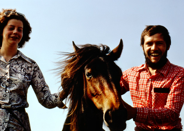 Pony-2.jpeg