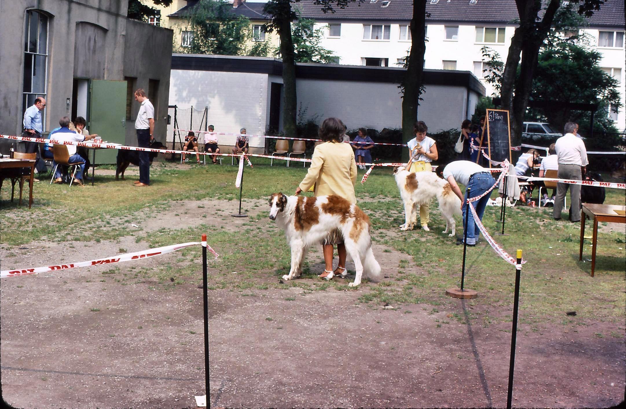 Dog-Show-3.jpeg