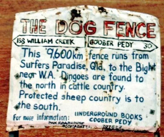 dog-fence-detail.jpeg