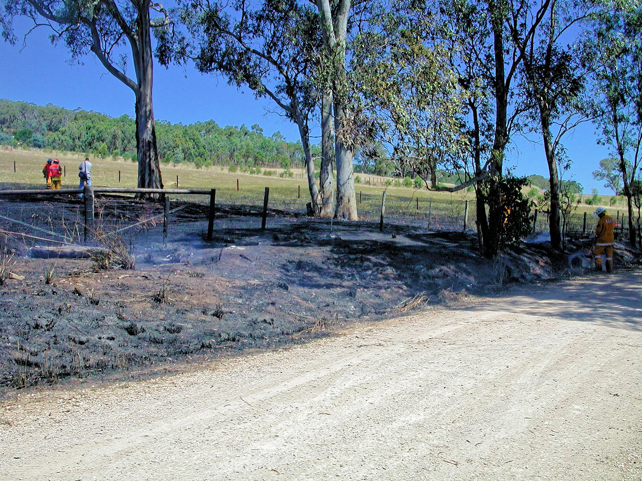 This should be bushfire-1538.jpeg.  Is it missing?