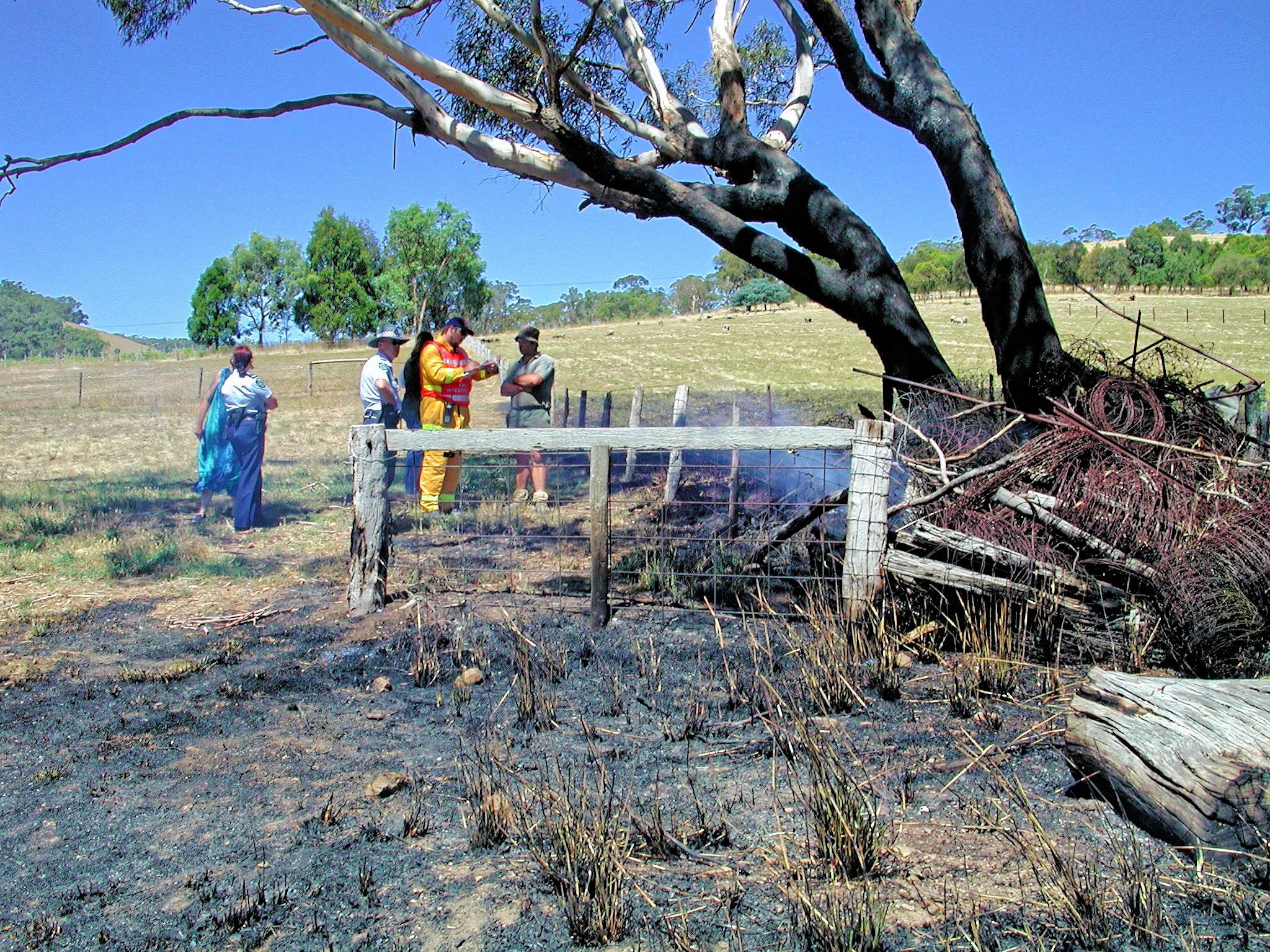 bushfire-1541.jpeg