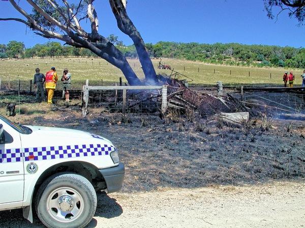 bushfire-1537.jpeg