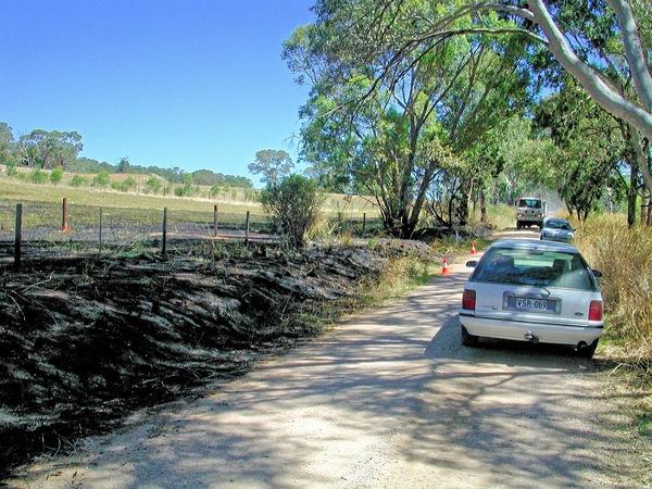 bushfire-1539.jpeg
