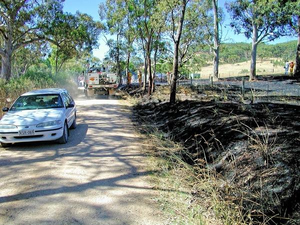 bushfire-1540.jpeg