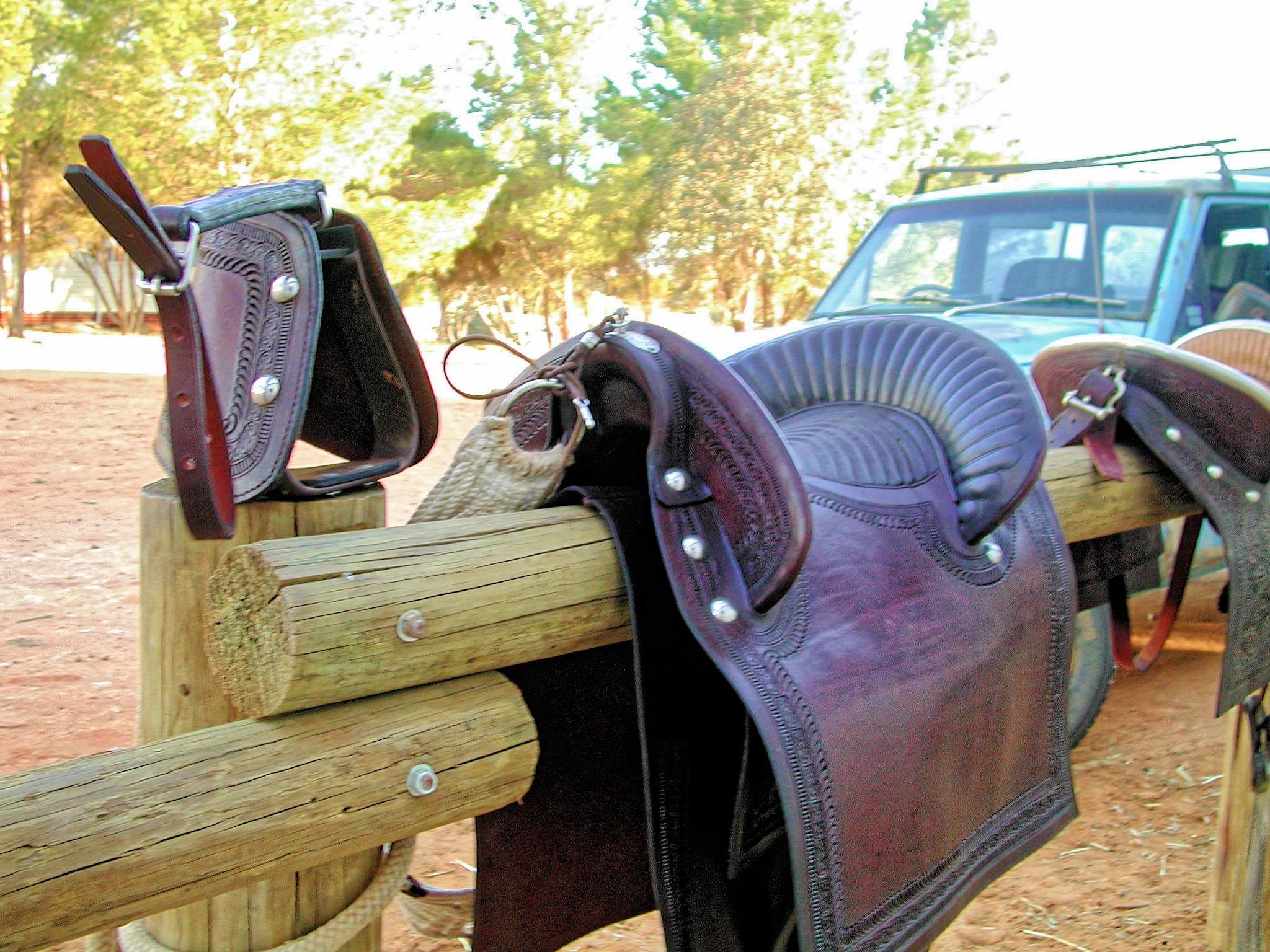 saddle-4.jpeg