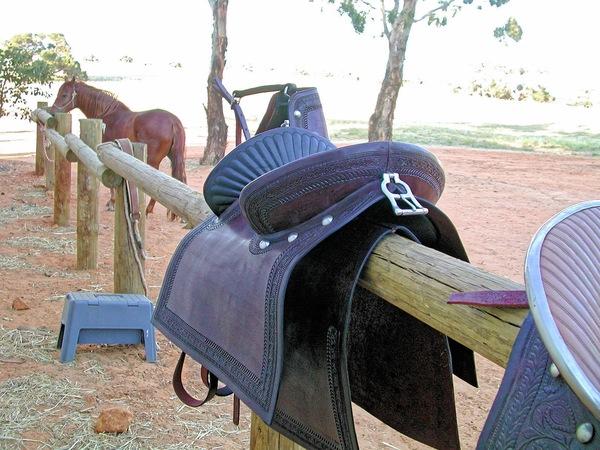 saddle-3.jpeg
