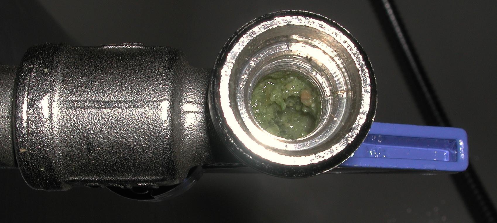 tap-2.jpeg