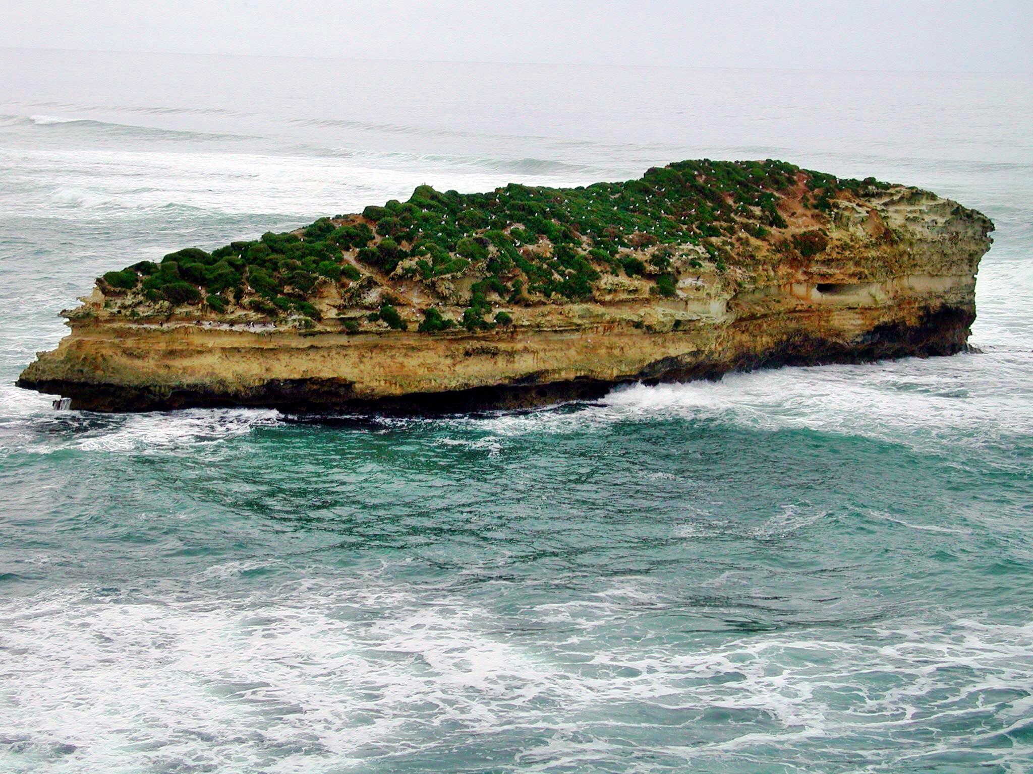 Coast-3.jpeg