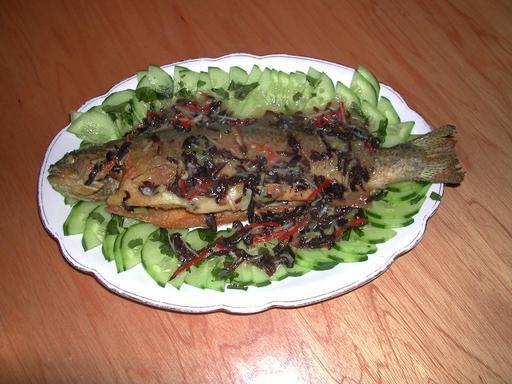 Fish-2.jpeg