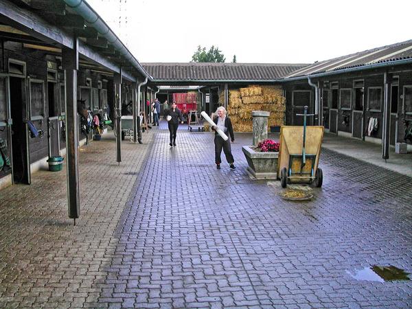 stall-3.jpeg