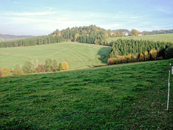 Boehmerwald-2.jpeg