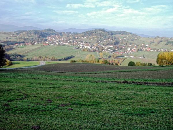 Boehmerwald-3.jpeg