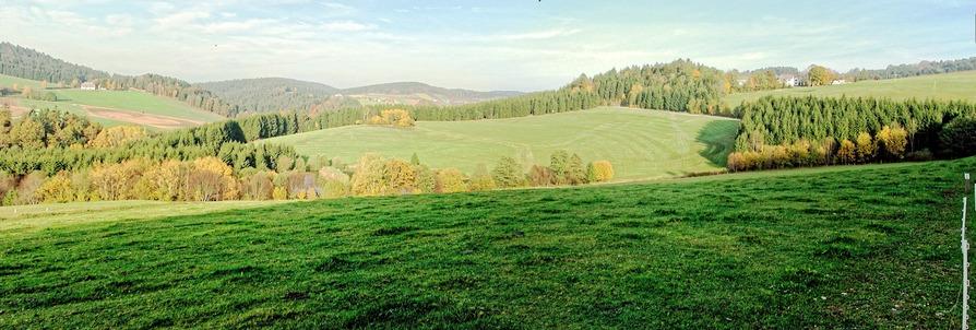 Boehmerwald.jpeg