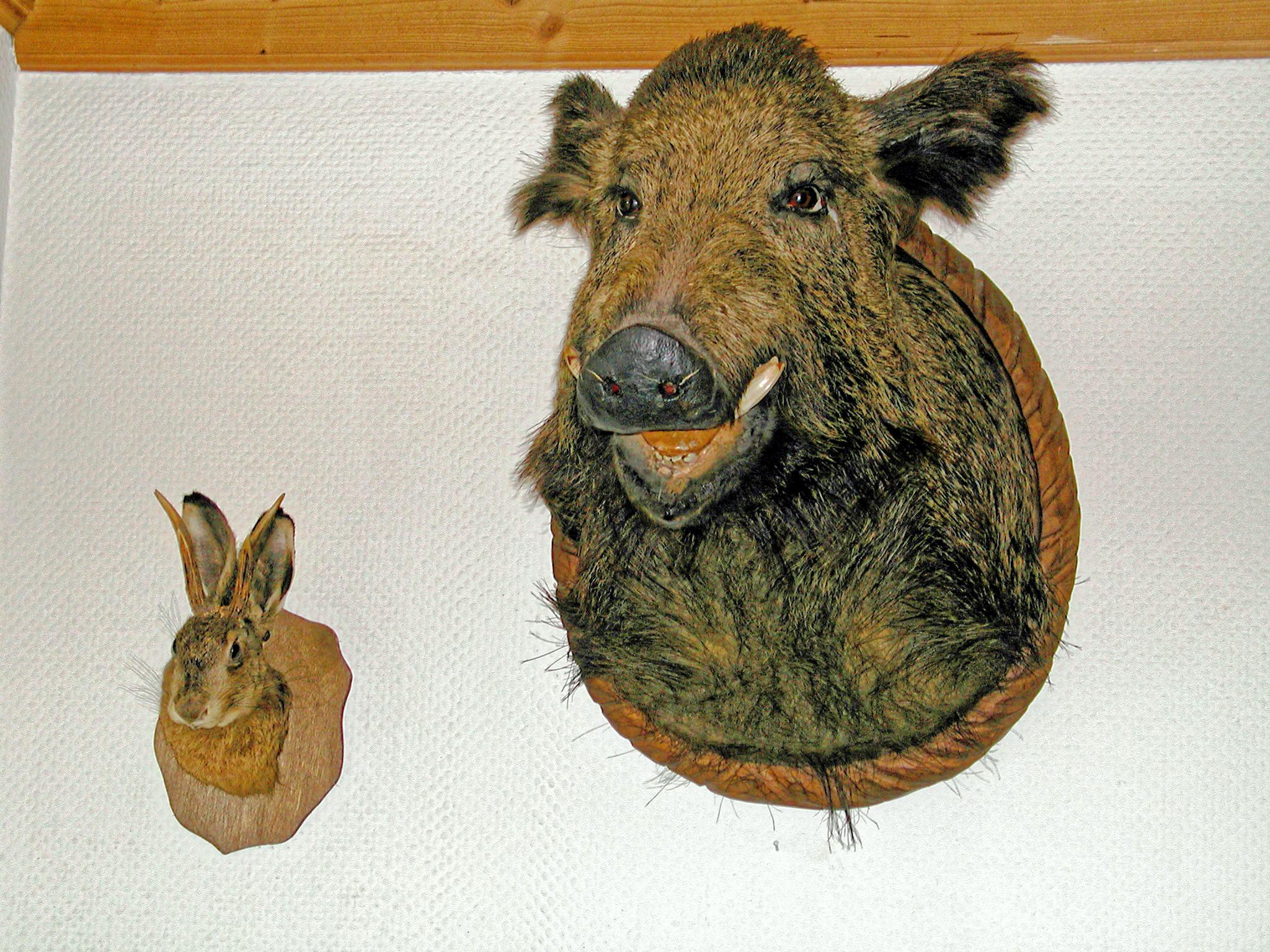 This should be wolpertinger-and-friend-1.jpeg.  Is it missing?