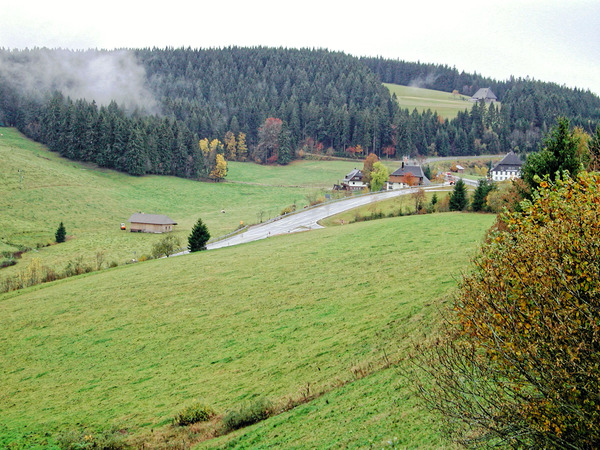 schwarzwald-2.jpeg