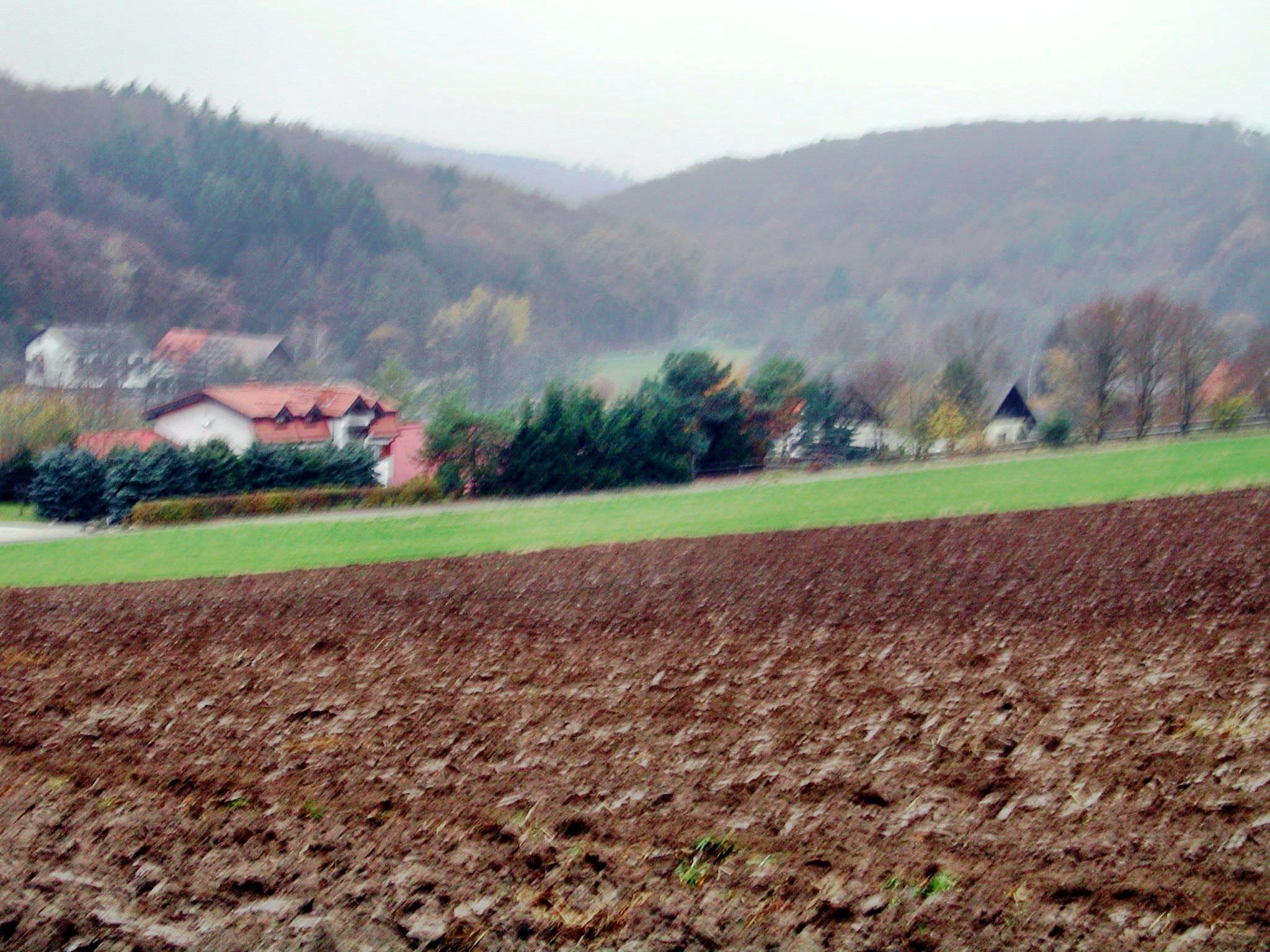 Schellnhausen-4.jpeg