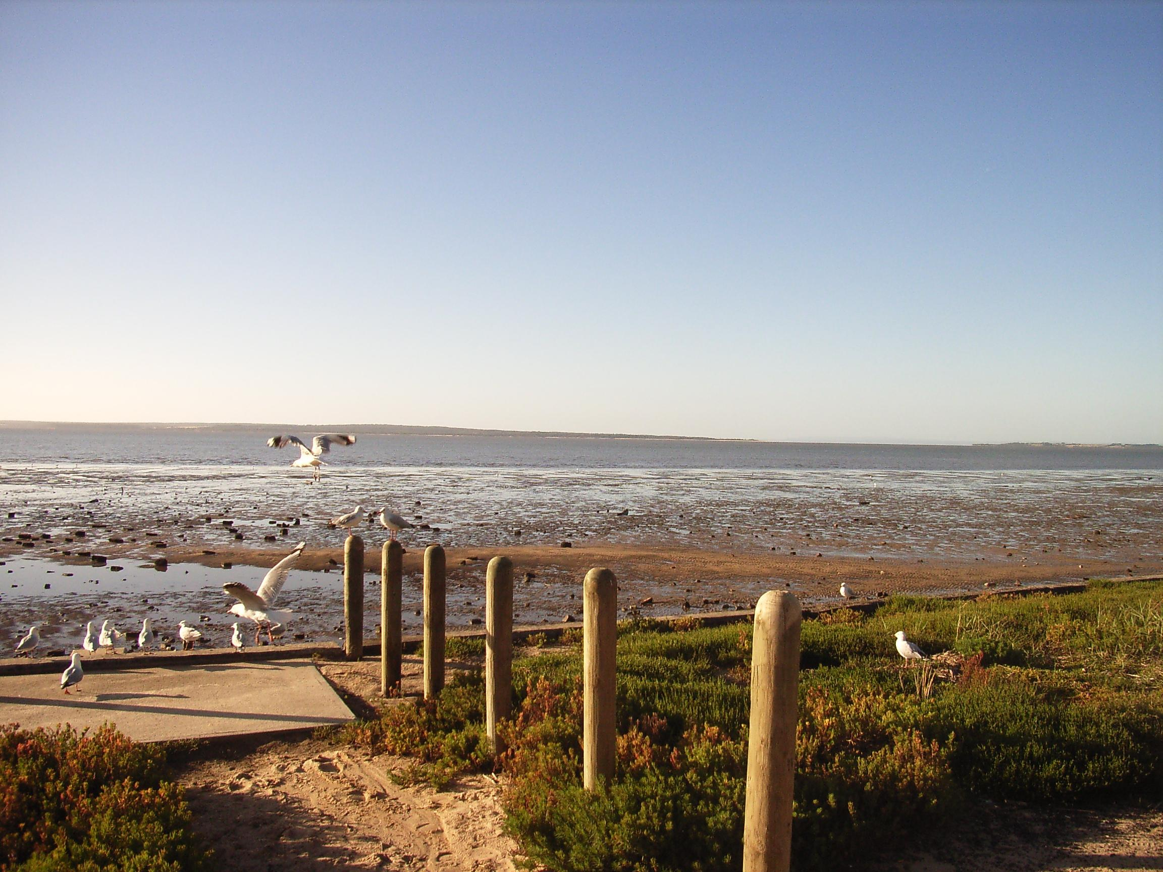 beach-9.jpeg