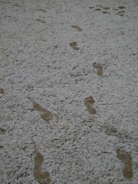 footprints-in-snow-1.jpeg