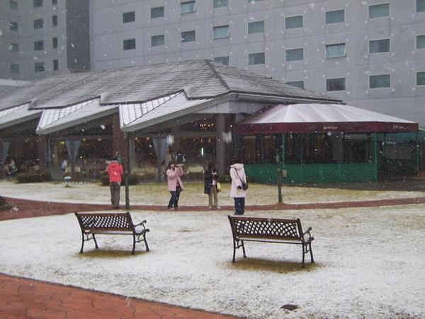 snowfall-in-japan.jpeg