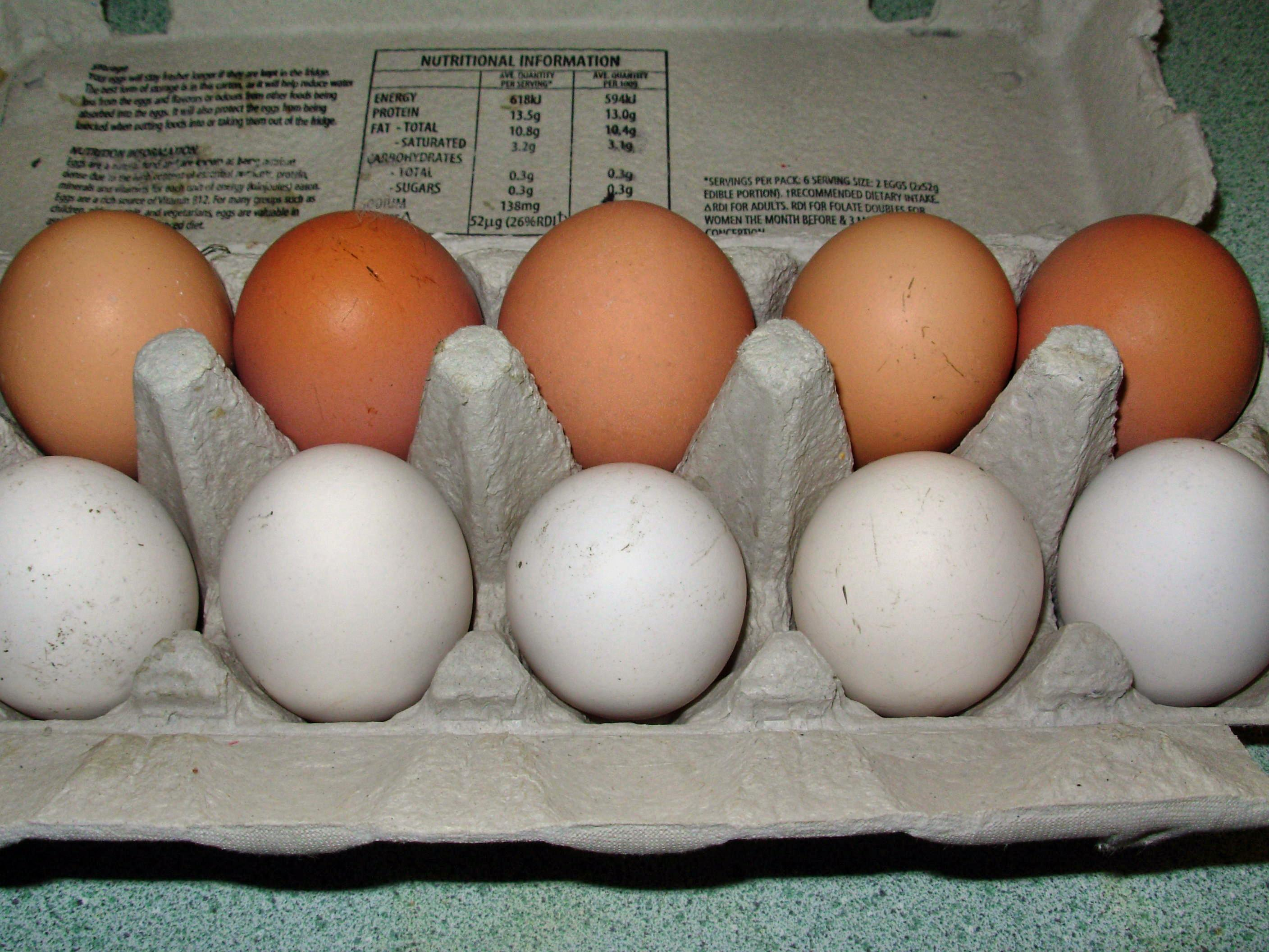 This should be eggs-1.jpeg.  Is it missing?