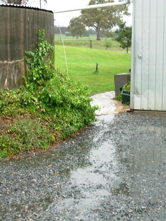 rain-4.jpeg