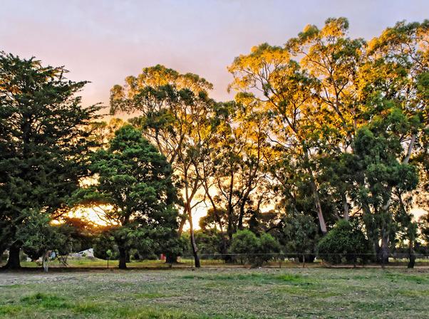 sunset-g-5.jpeg