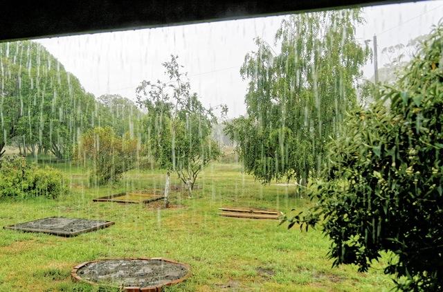 rain-2.jpeg