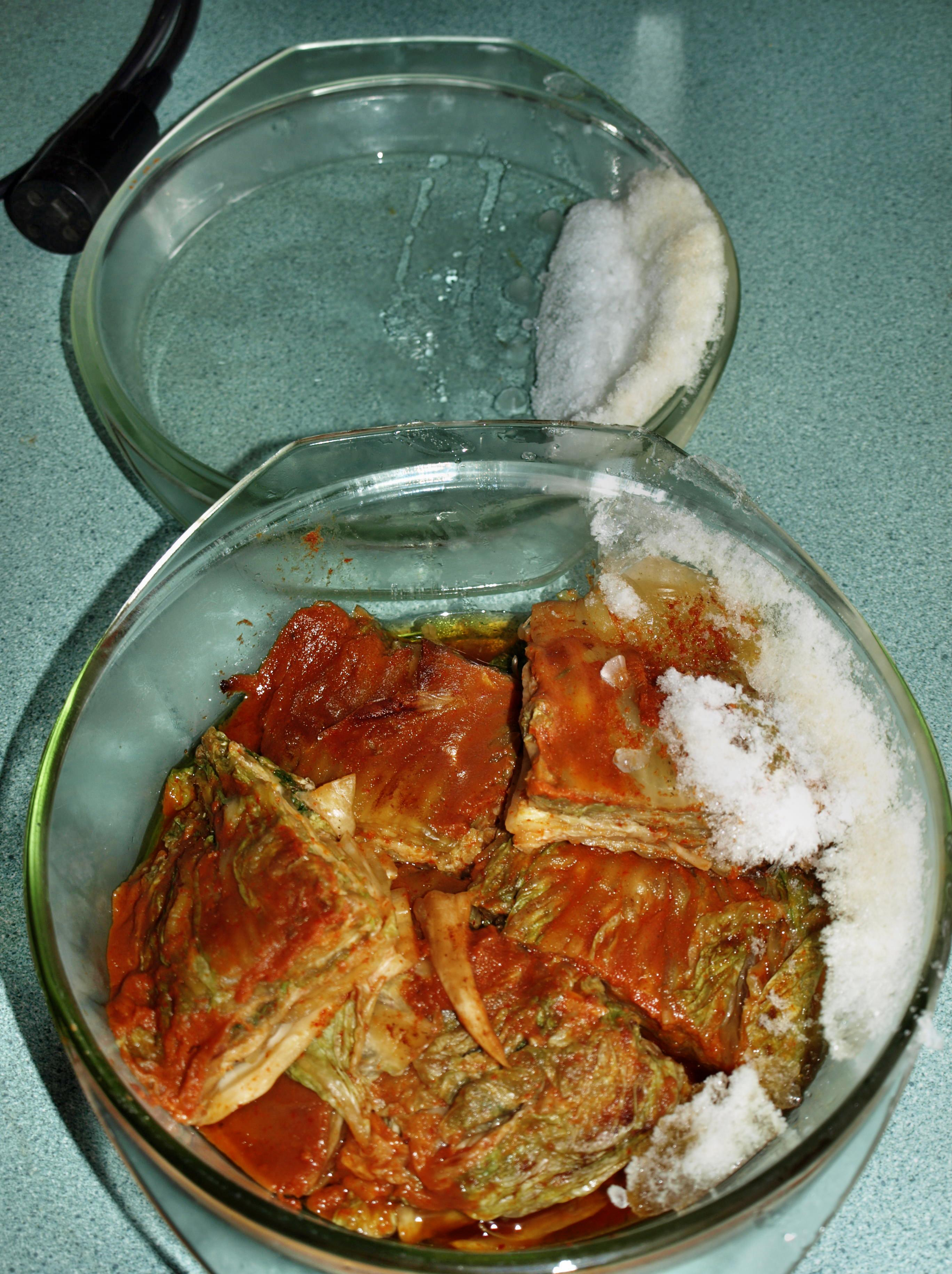 frozen-kimchi-2.jpeg