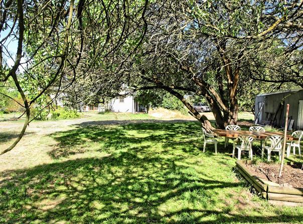 garden-w.jpeg
