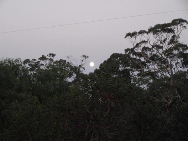 moon-over-lagoon.jpeg