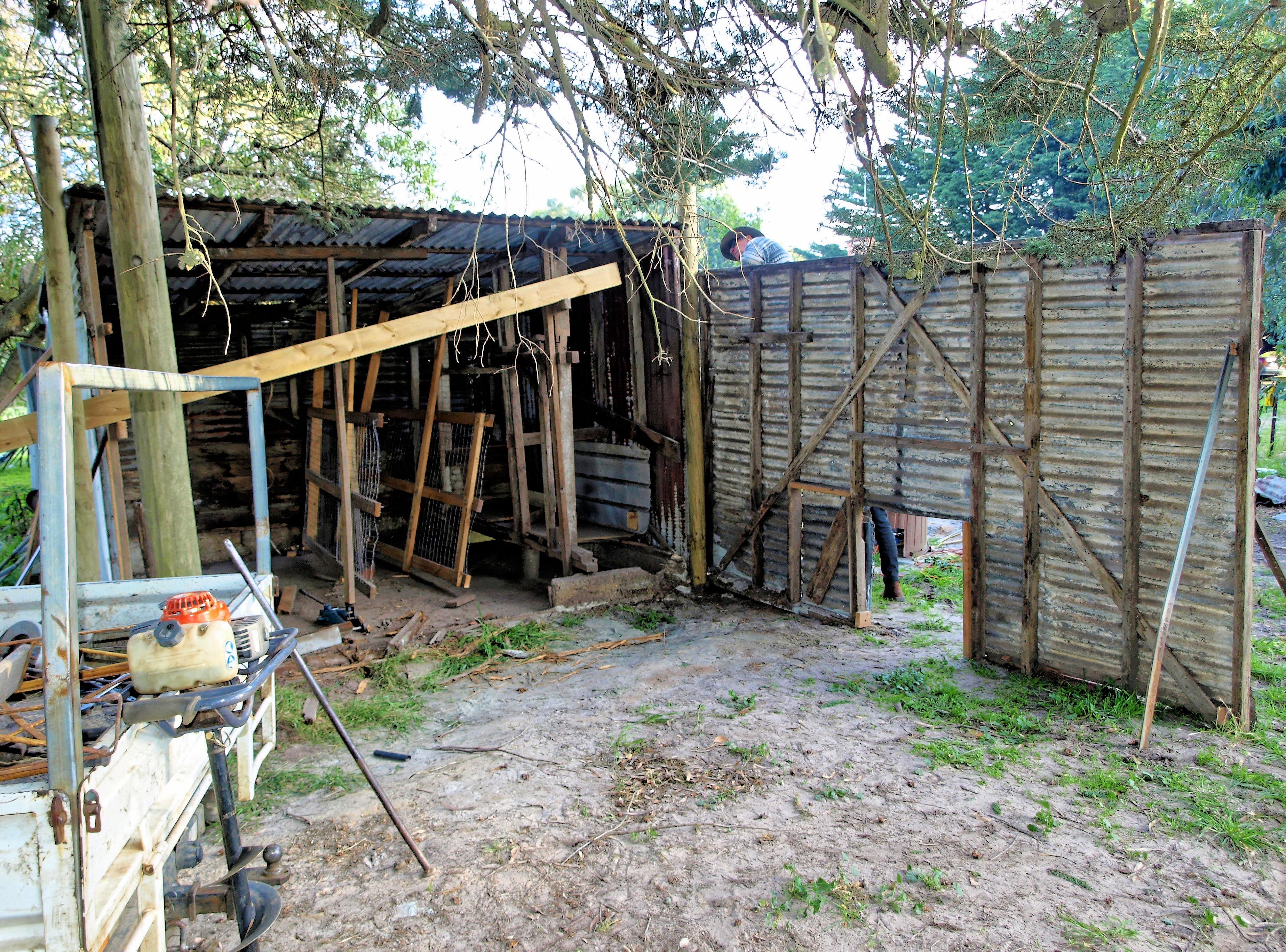 shed-11.jpeg