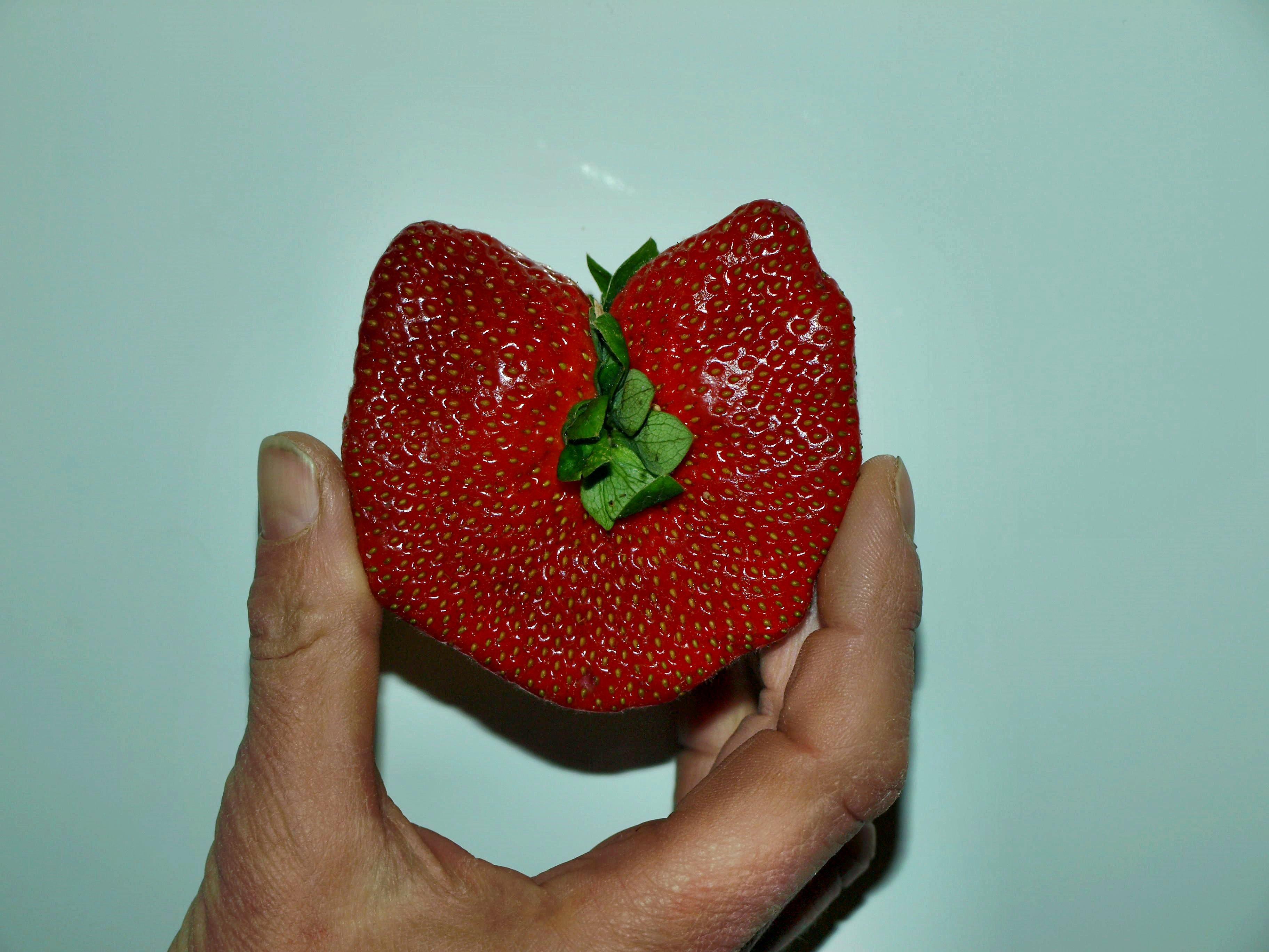 strawberry-1.jpeg