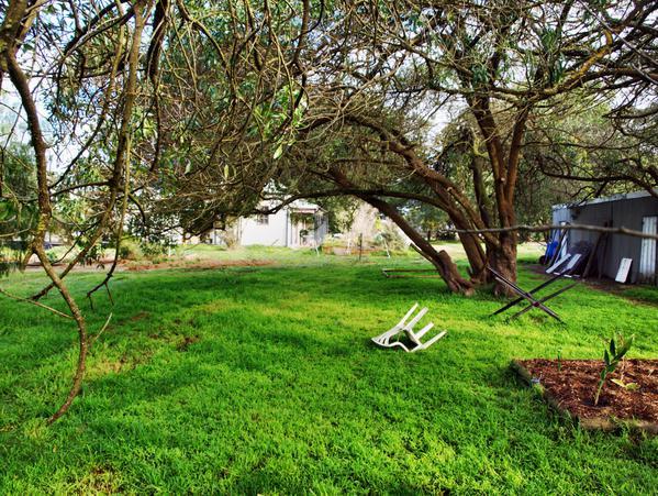garden-w-old.jpeg