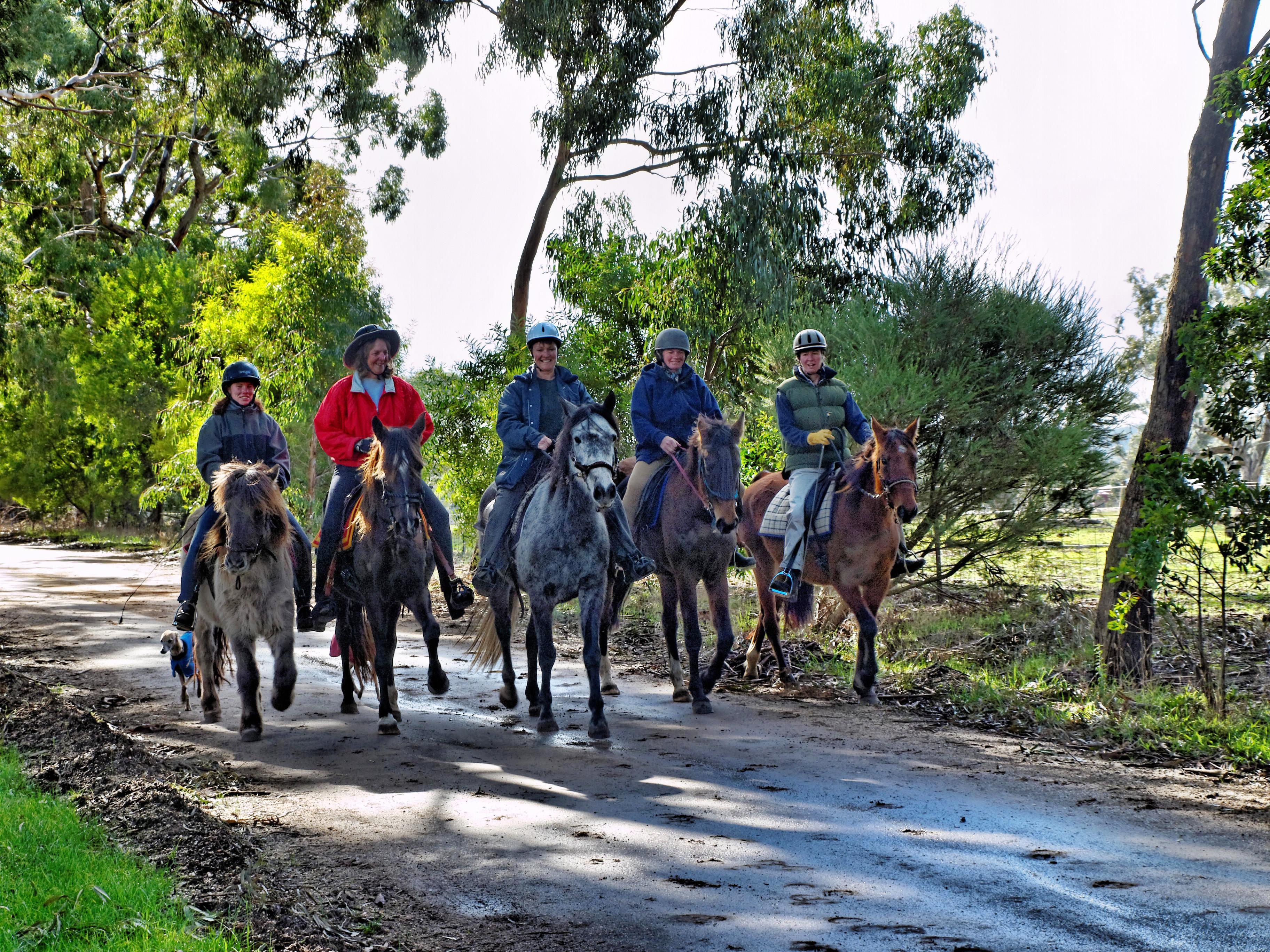 Horse-riding-11.jpeg