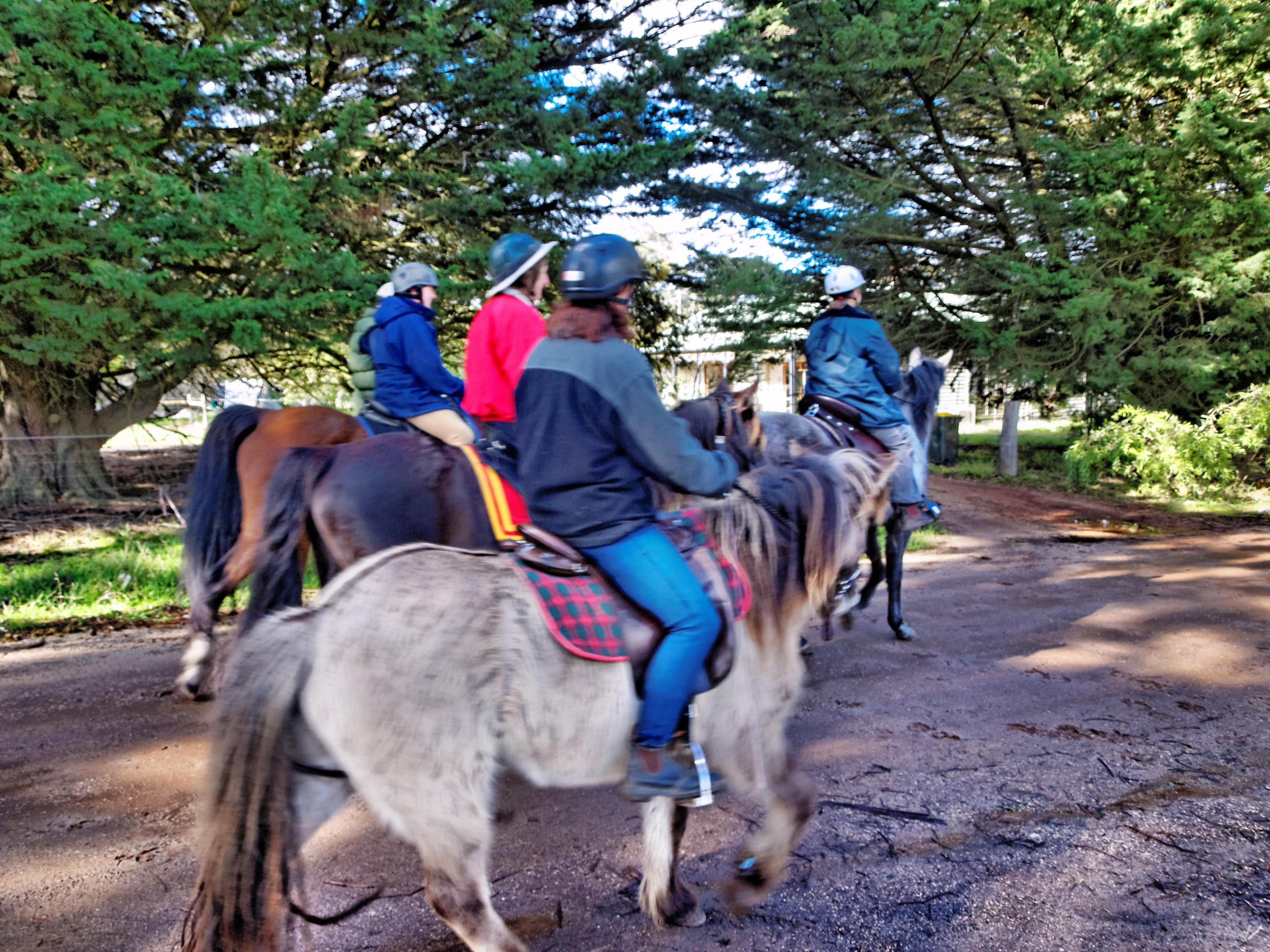 Horse-riding-16.jpeg