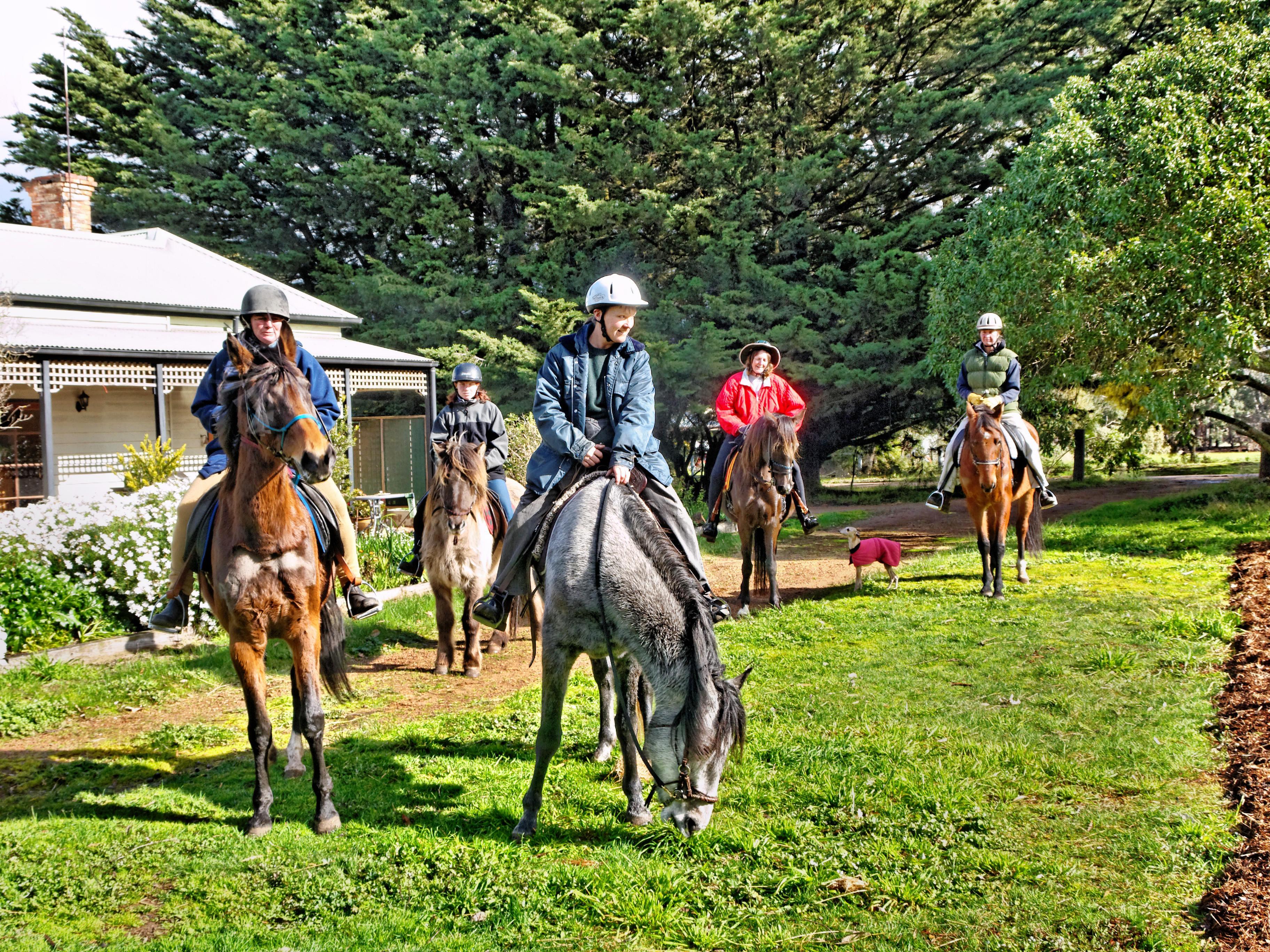 Horse-riding-17.jpeg