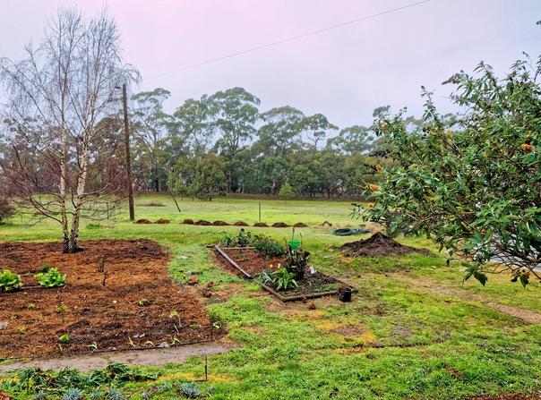 garden-e-before.jpeg