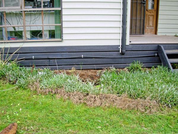 garden-s-after.jpeg