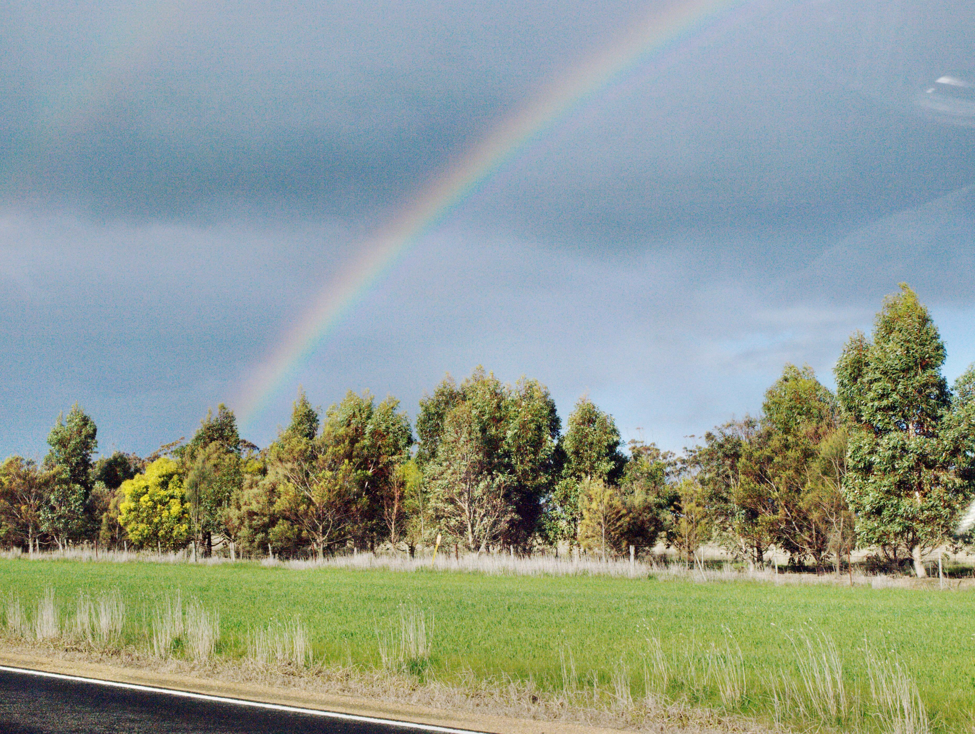 rainbow-3.jpeg