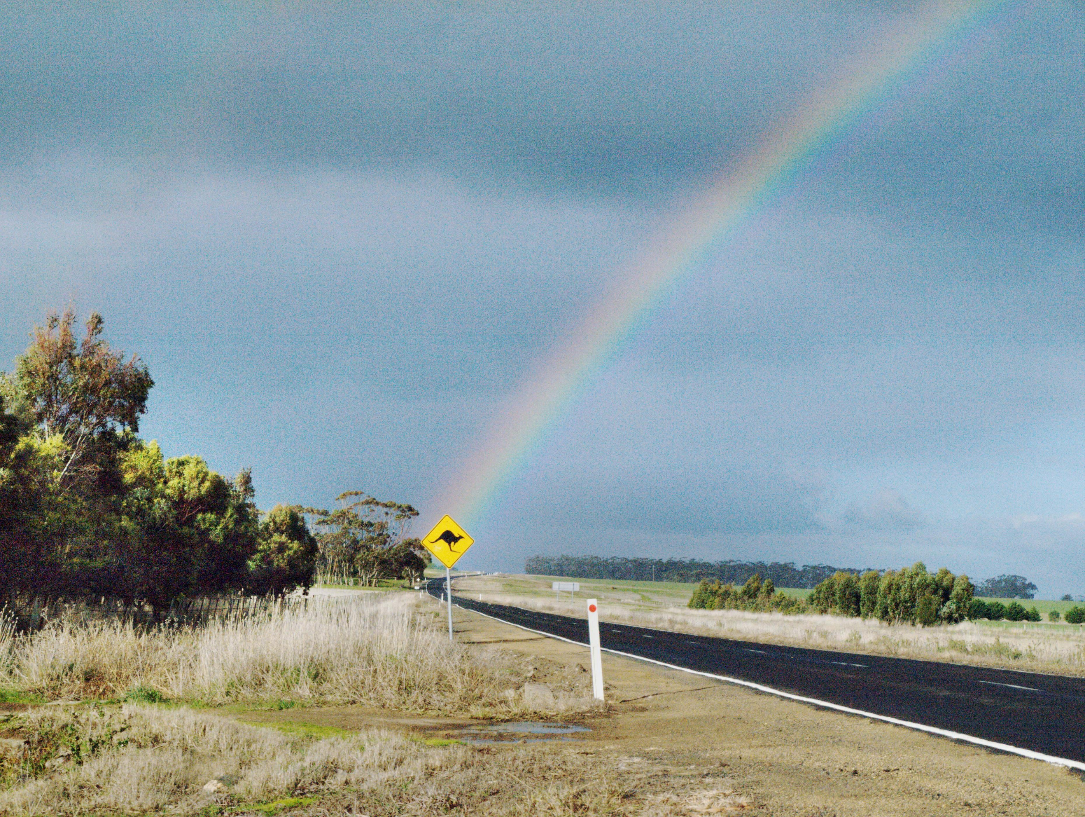 rainbow-4.jpeg