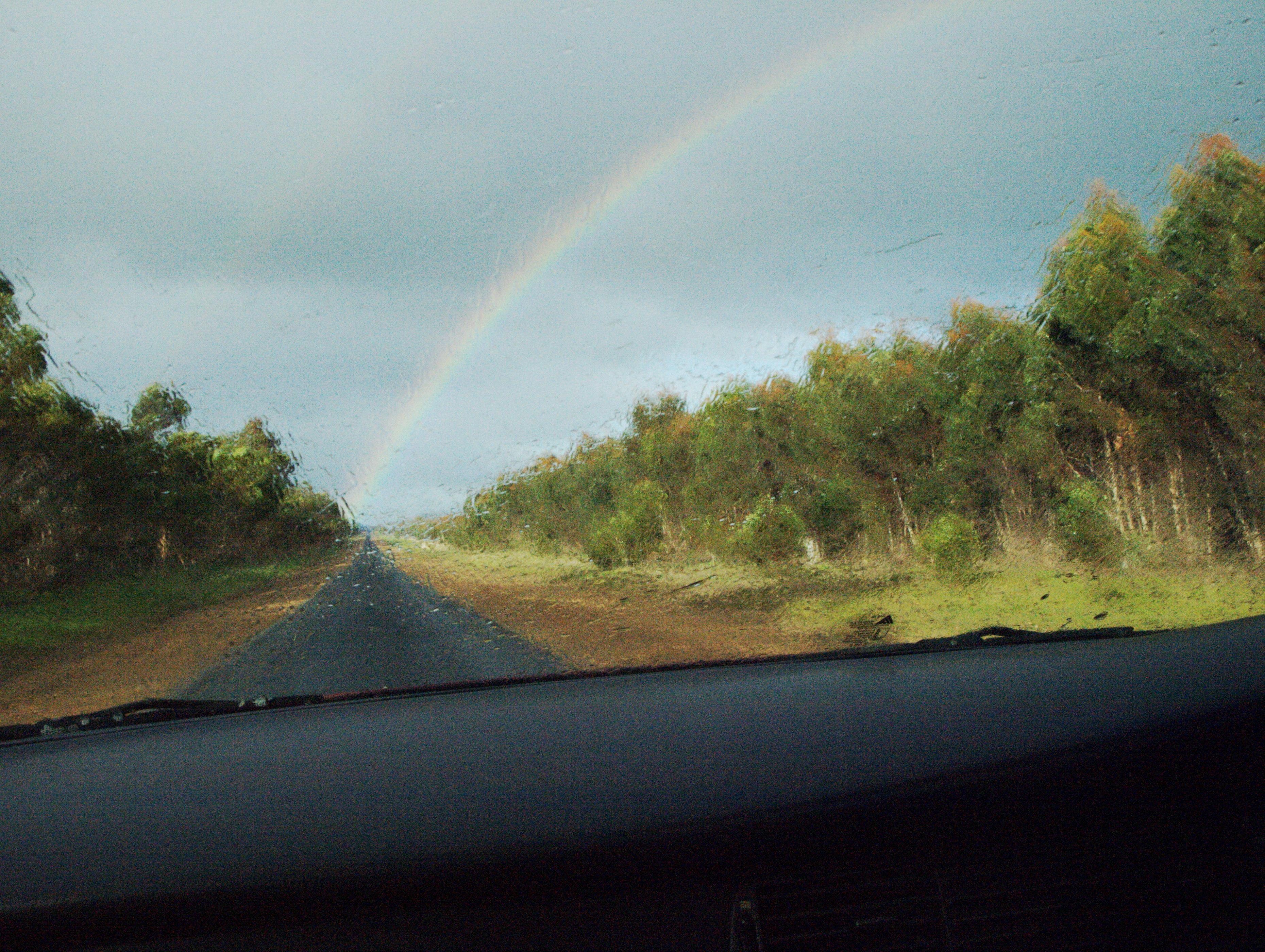 rainbow-6.jpeg