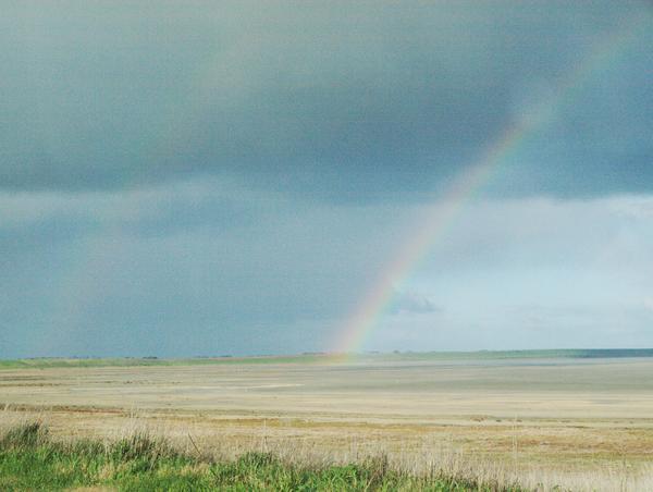rainbow-2.jpeg