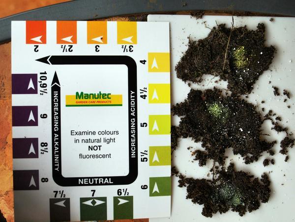 soil-ph.jpeg